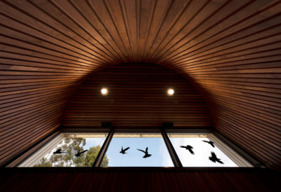 view of timber ceiling and timber clad walls in timber museum